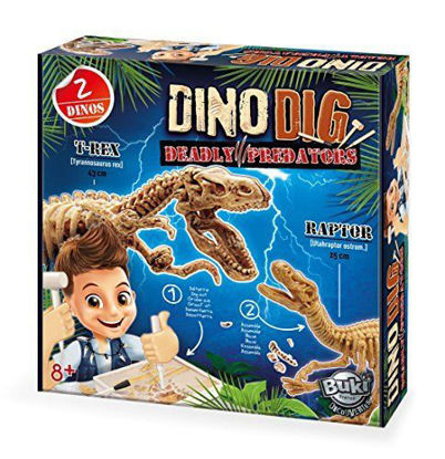 Image de Dino dig
