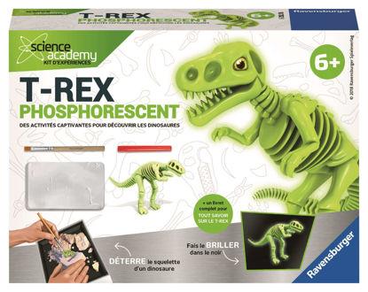 Image de T-rex phosphorescent 18782