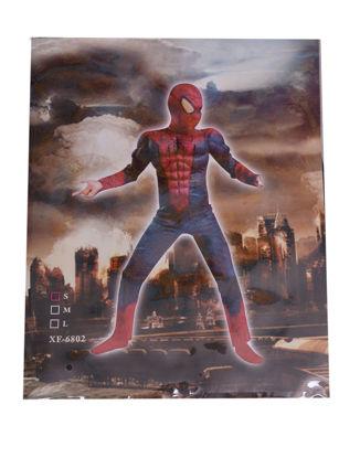 Image de Déguisement Spider Man