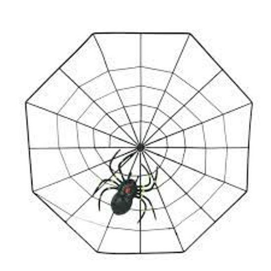Image de Faux Araignée en plastique réaliste avec toile d'araignée pour Halloween