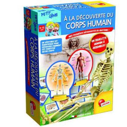 Image de A la découverte du corp humain EX 48960