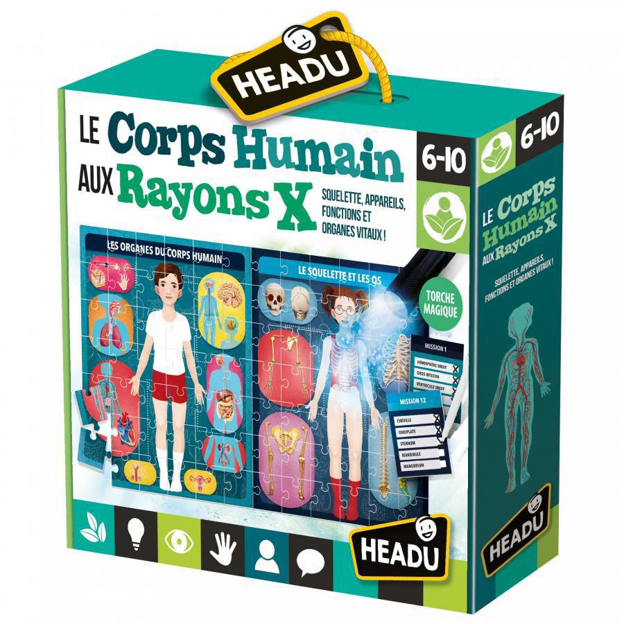 Image de Headu Le Corps Humain aux Rayons X 22755