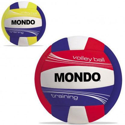 Image de Ballon volley ball 13135